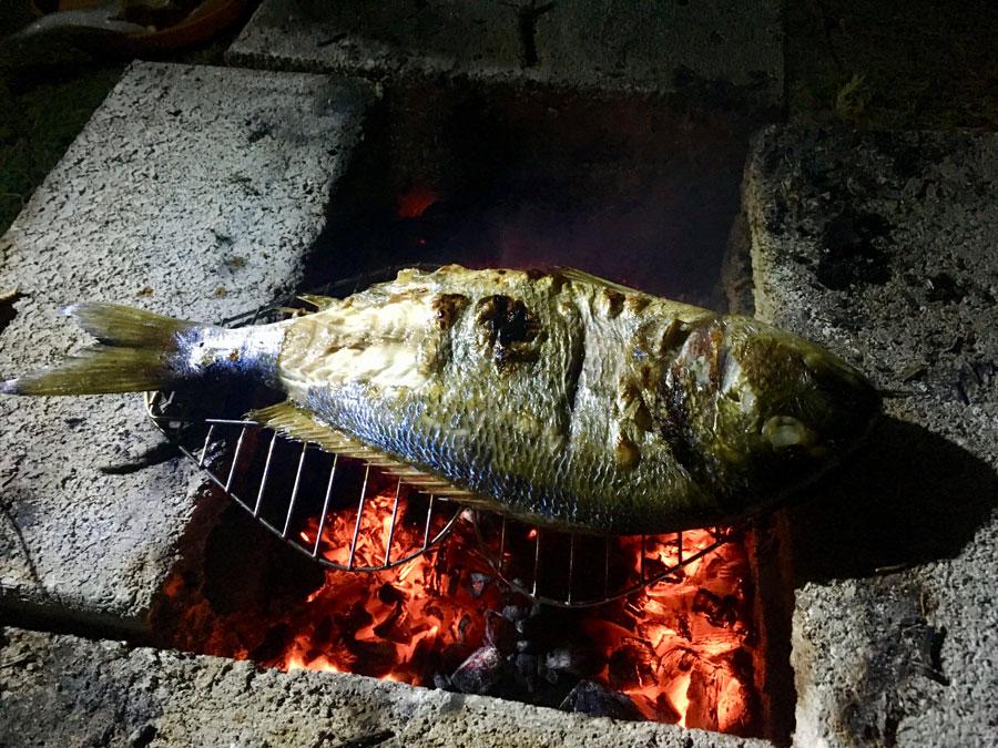 poisson grillé sur le feu sur la plage de Krioneri