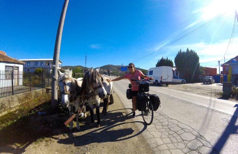 ânes tirant une charette en Albanie