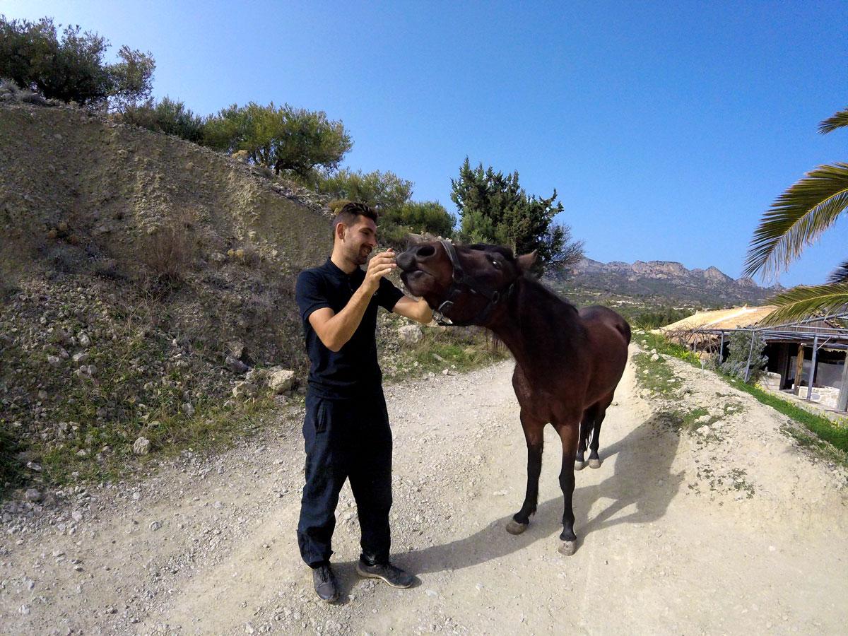 Voyage à vélo, workaway près de Ierapetra dans la ferme de Manolis, Arthur en train de nourrir le cheval. Cycling travel, workaway at Manolis' farm near Ierapetra, Arthur is feeding the horse.